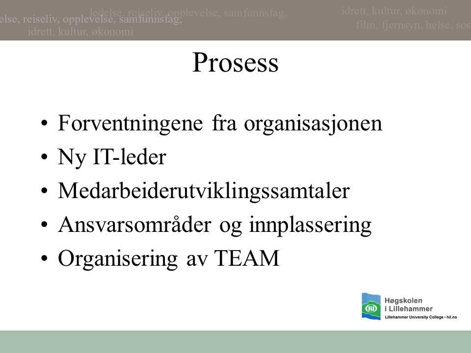 Prosess •Forventningene fra organisasjonen •Ny IT-leder •Medarbeiderutviklingssamtaler •Ansvarsområder og innplassering •Organisering av TEAM