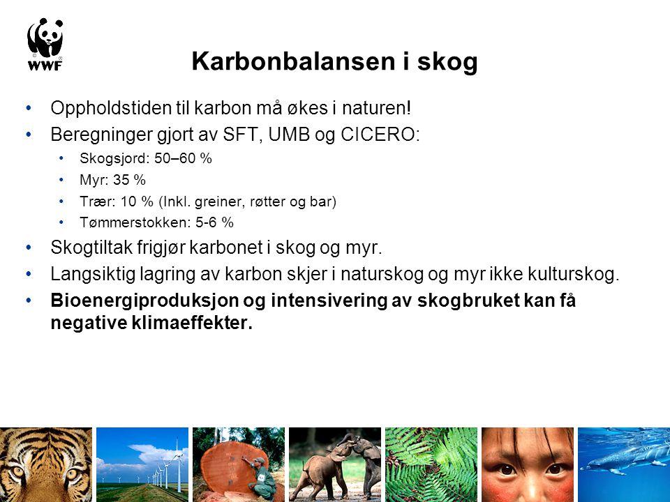 Skogbrukets skjulte karbonutslipp •Skogarealet i Norge er relativt ungt •Mengden CO2 som nå lagres er i tilnærmet samme størrelsesorden som ble sluppet ut gjennom tidligere skogavvirkning •Kyoto-avtalen tillater f.