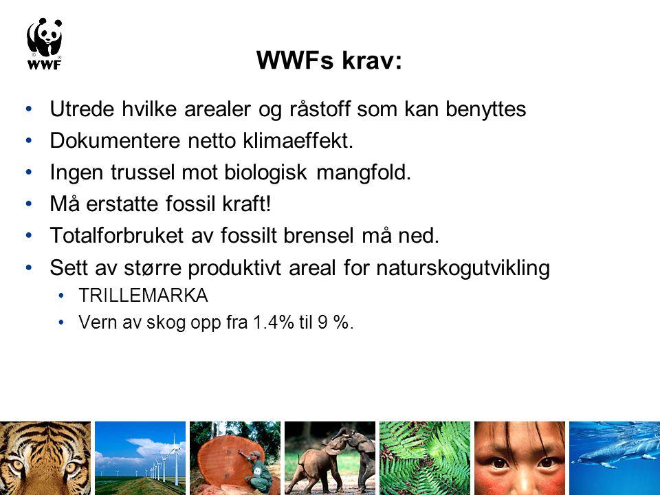 WWFs råd for bioenergi •Støtt Nederland og Storbritannia i utviklingen av miljøstandard for bioenergiproduksjon i EU.