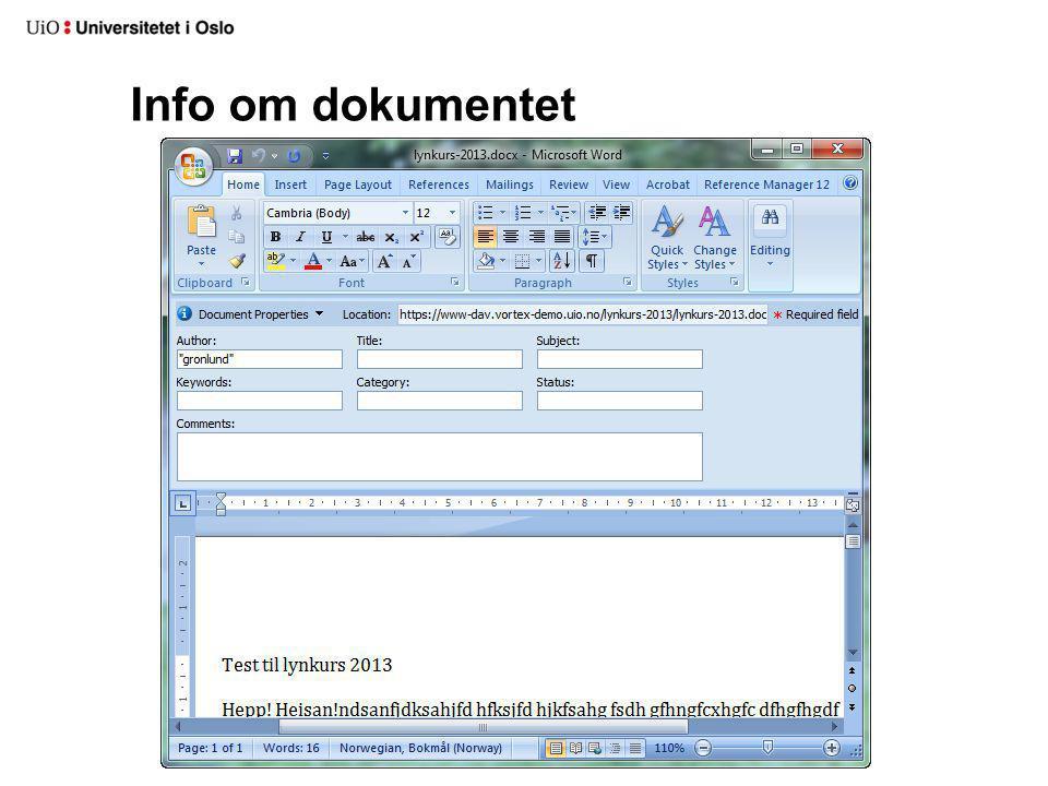 Info om dokumentet