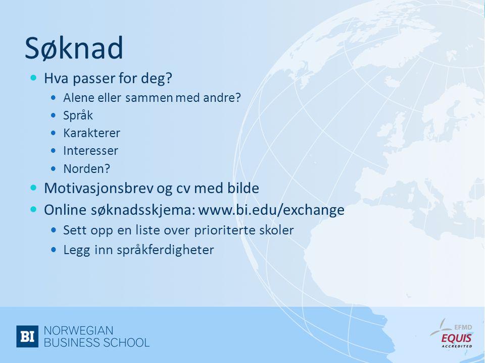 Søknad  Hva passer for deg?  Alene eller sammen med andre?  Språk  Karakterer  Interesser  Norden?  Motivasjonsbrev og cv med bilde  Online sø
