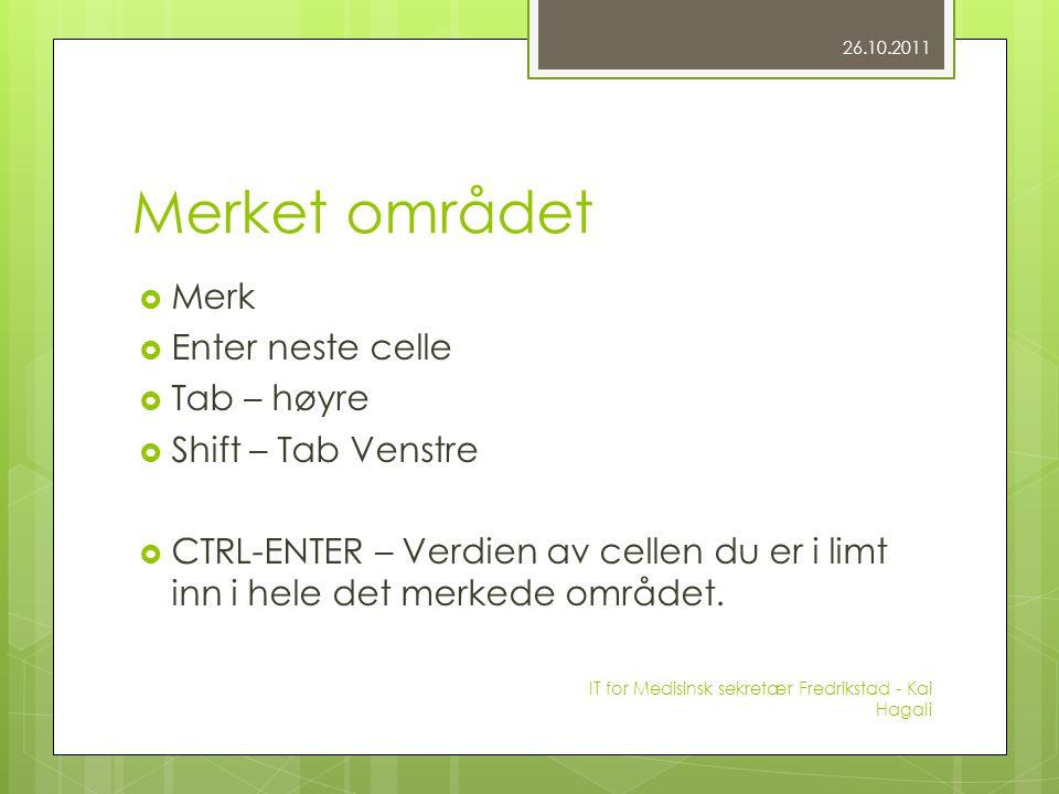 Merket området  Merk  Enter neste celle  Tab – høyre  Shift – Tab Venstre  CTRL-ENTER – Verdien av cellen du er i limt inn i hele det merkede området.