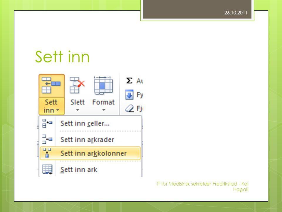 Sett inn 26.10.2011 IT for Medisinsk sekretær Fredrikstad - Kai Hagali