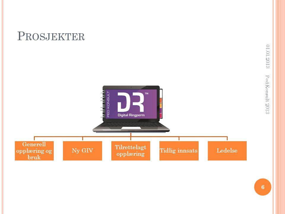 P ROSJEKTER Digital Ringperm: Generell opplæring og bruk Ny GIV Tilrettelagt opplæring Tidlig innsatsLedelse 01.01.2013 6 Ped:Konsult 2013