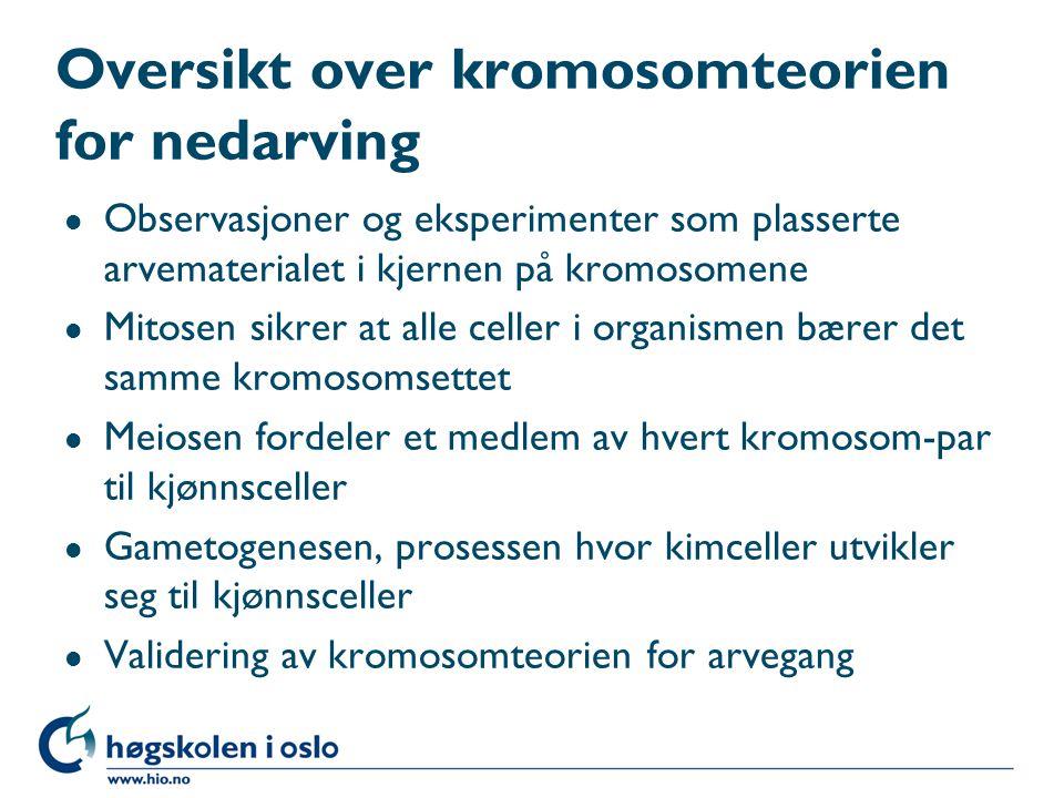 Overkryssing under profase produserer rekombinante kromosomer Fig. 4.14 a-c