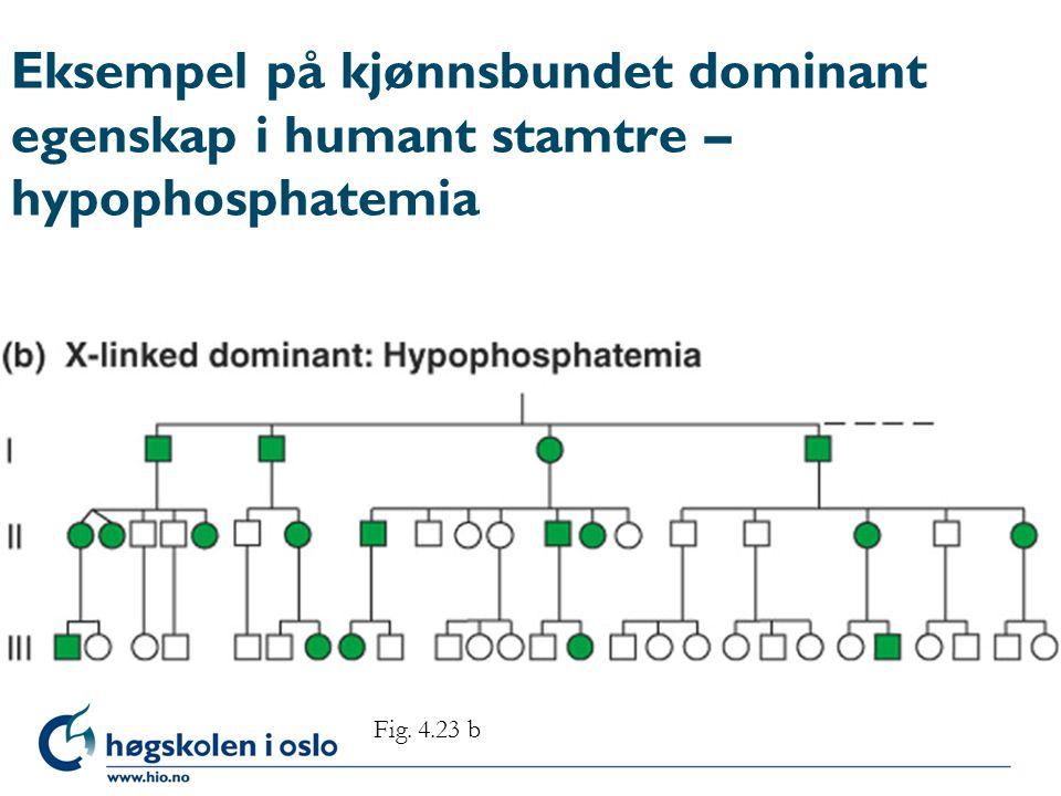 Eksempel på kjønnsbundet dominant egenskap i humant stamtre – hypophosphatemia Fig. 4.23 b