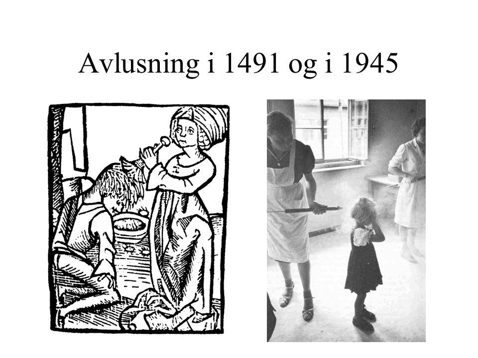 Avlusning i 1491 og i 1945