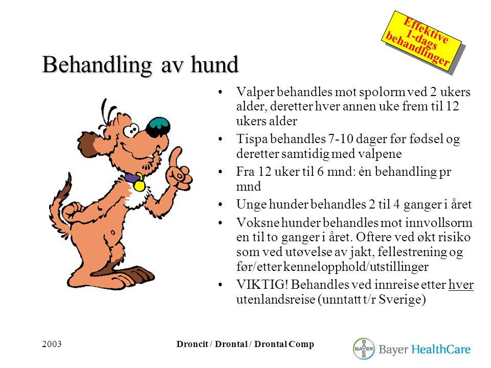 2003Droncit / Drontal / Drontal Comp Effektive 1-dags behandlinger Effektive 1-dags behandlinger Behandling av hund •Valper behandles mot spolorm ved