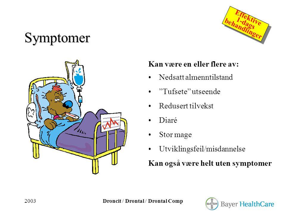 2003Droncit / Drontal / Drontal Comp Effektive 1-dags behandlinger Effektive 1-dags behandlinger Symptomer Kan være en eller flere av: •Nedsatt almenn