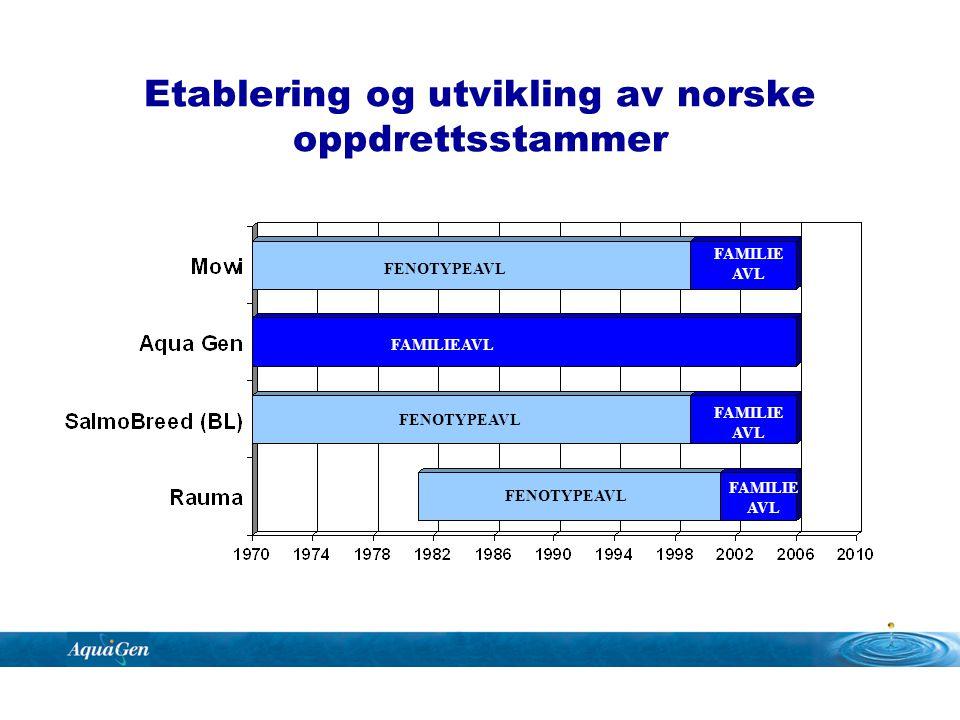 Etablering og utvikling av norske oppdrettsstammer FAMILIEAVL FAMILIE AVL FAMILIE AVL FAMILIE AVL FENOTYPEAVL