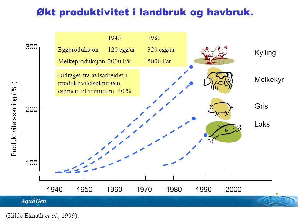300 200 100 Produktivitetsøkning ( % ) 1940195019601970198019902000 Kylling Melkekyr Gris Laks Økt produktivitet i landbruk og havbruk. (Kilde Eknath
