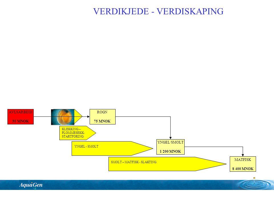 KLEKKING – PLOMMESEKK- STARTFORING YNGEL - SMOLT SMOLT – MATFISK - SLAKTING Rogn levering AVLSARBEID 35 MNOK ROGN 75 MNOK YNGEL/SMOLT 1 200 MNOK MATFI