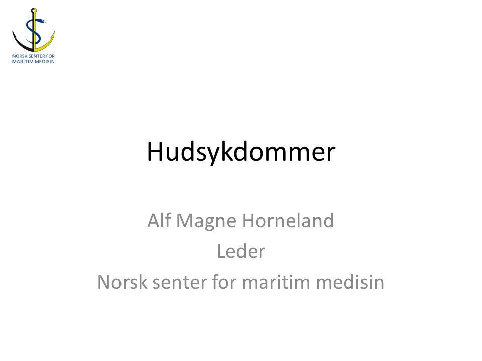 Hudsykdommer Alf Magne Horneland Leder Norsk senter for maritim medisin