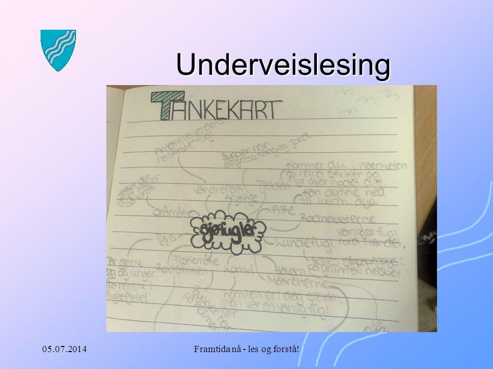 05.07.2014Framtida nå - les og forstå! Underveislesing