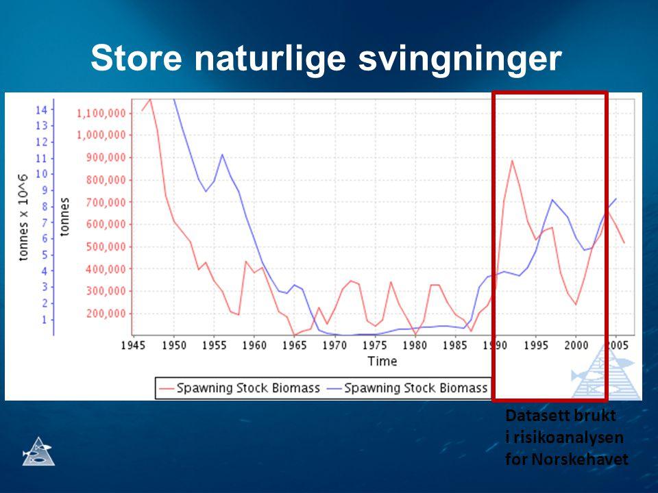 Store naturlige svingninger Datasett brukt i risikoanalysen for Norskehavet