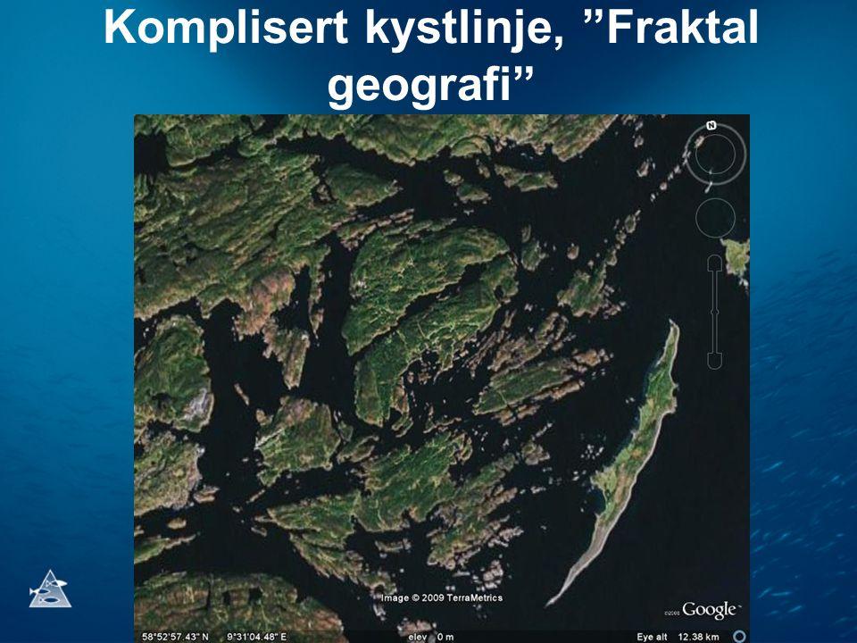 Komplisert kystlinje, Fraktal geografi