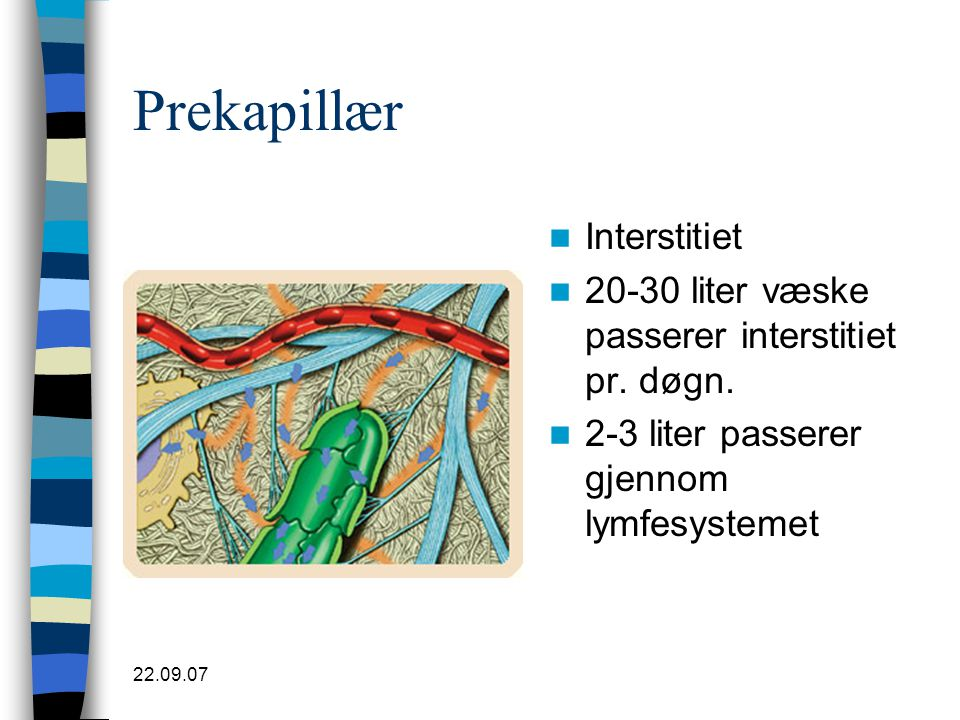22.09.07 Prekapillær  Interstitiet  20-30 liter væske passerer interstitiet pr. døgn.  2-3 liter passerer gjennom lymfesystemet