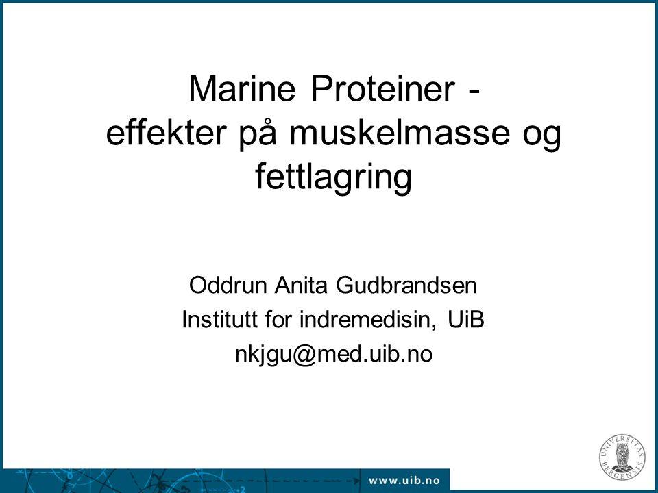 1 Marine Proteiner - effekter på muskelmasse og fettlagring Oddrun Anita Gudbrandsen Institutt for indremedisin, UiB nkjgu@med.uib.no