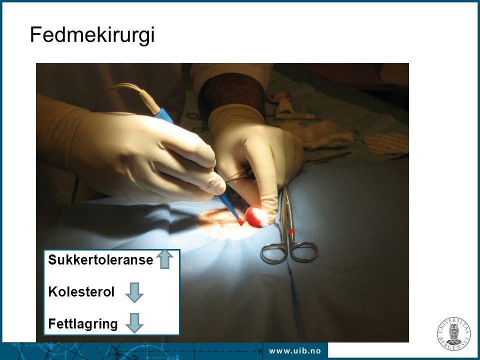 Fedmekirurgi Sukkertoleranse Kolesterol Fettlagring