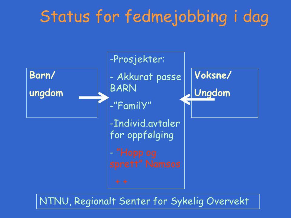 """Barn/ ungdom -Prosjekter: - Akkurat passe BARN -""""FamilY"""" -Individ.avtaler for oppfølging - """"Hopp og sprett"""" Namsos + + NTNU, Regionalt Senter for Syke"""