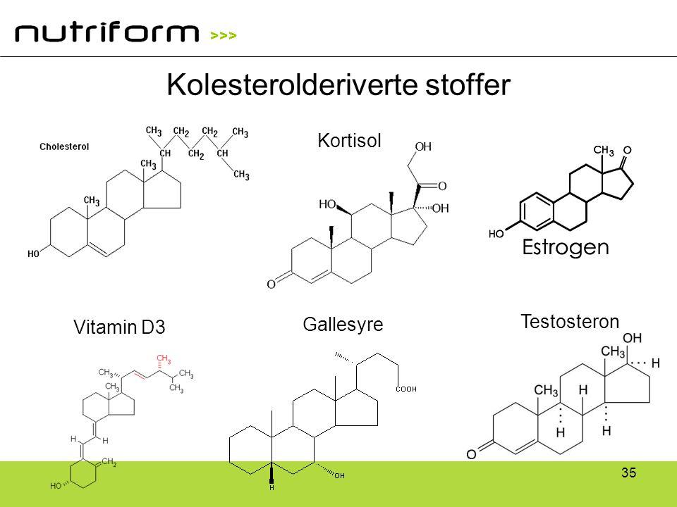 >>> 35 Kolesterolderiverte stoffer Testosteron Vitamin D3 Gallesyre Kortisol