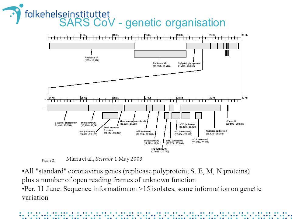 Predicted membrane proteins of SARS CoV