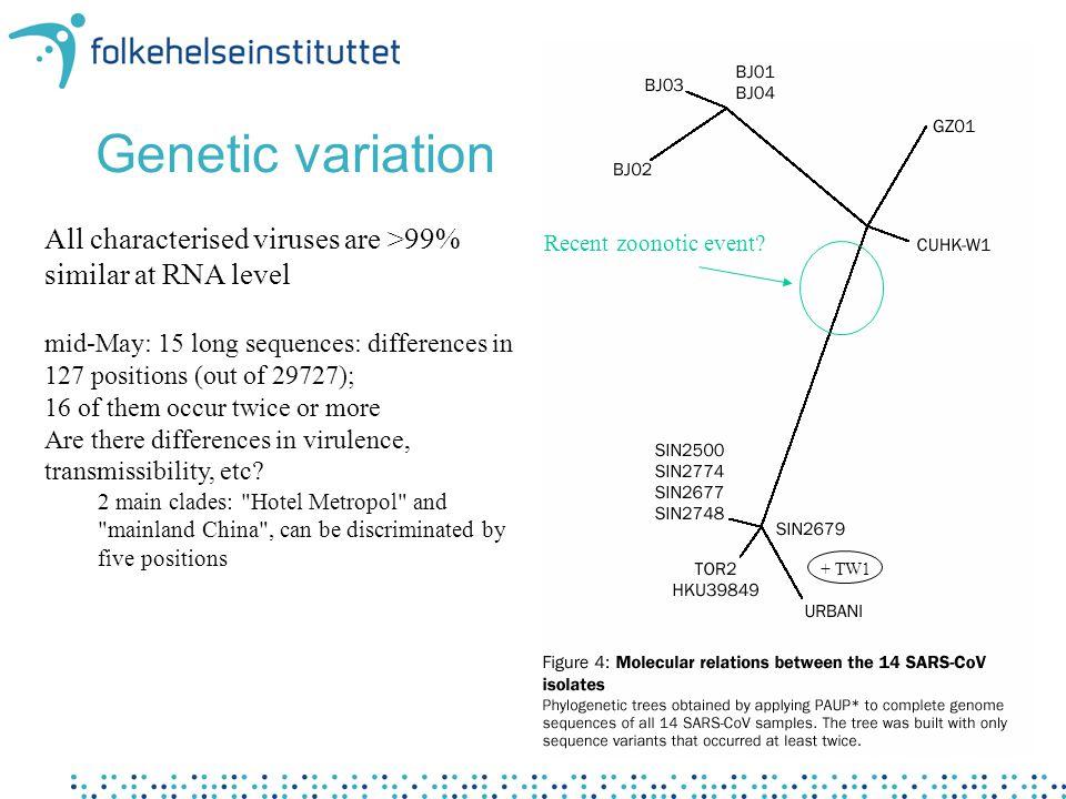 SARS-diagnostikk i Norge •30 mars: Første PCR-protokoll offentliggjort (Bernhard Nocht-Institut, Hamburg) –Primere, reagenser og positiv kontroll-RNA bestilt og prøvd ut på FHI - klar ca 10 d senere –Flere sykehuslab har nå operativ RT-PCR diagnostikk for SARS-CoV - 1 lab gjør dyrking på SARS-prøver •FHI utpekt av HD som nasjonalt referanselaboratorium 6 mai •Etter vurdering kan prøver videresendes til internasjonale lab for tester vi (ennå) ikke har i Norge •Antistoff-testreagenser (immunfluorescens) nå kommersielt tilgjengelig