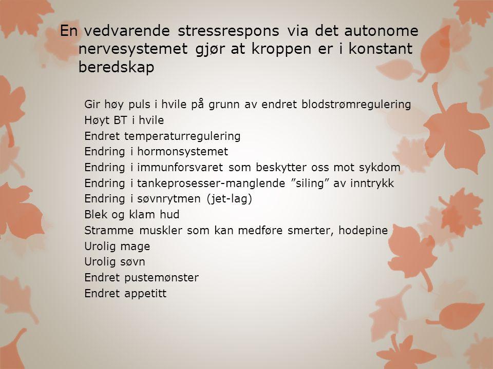 En vedvarende stressrespons via det autonome nervesystemet gjør at kroppen er i konstant beredskap Gir høy puls i hvile på grunn av endret blodstrømre