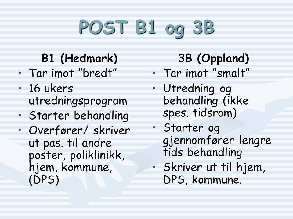 POST B1 og 3B B1 (Hedmark) •Tar imot bredt •16 ukers utredningsprogram •Starter behandling •Overfører/ skriver ut pas.
