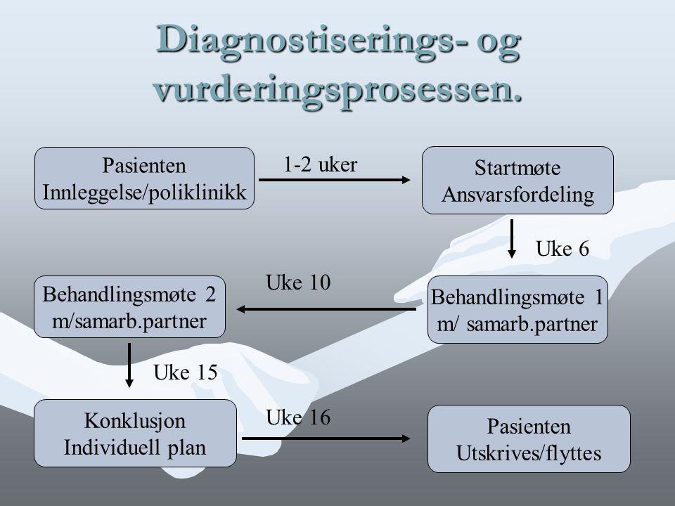 Diagnostiserings- og vurderingsprosessen.