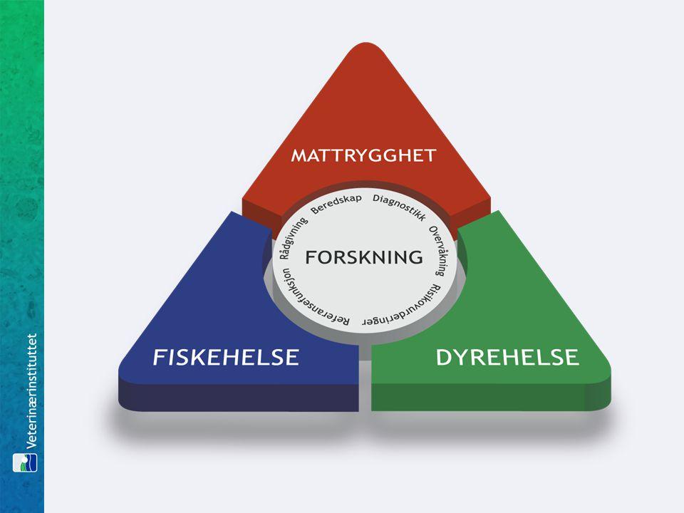 Strategiske vurderinger overordnede føringer  Blå-grønne matalliansen Veterinærinstituttet – forvaltningsrettet institutt  Norges forskningsråd Veterinærinstituttet er et forskningsinstitutt, men basisbevilgningen er ikke avklart