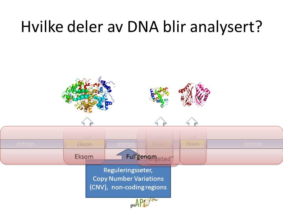 """Hvilke deler av DNA blir analysert? Intron Ekson Intron Ekson Intron Reguleringsseter, Copy Number Variations (CNV), non-coding regions """"Targeted"""" Eks"""