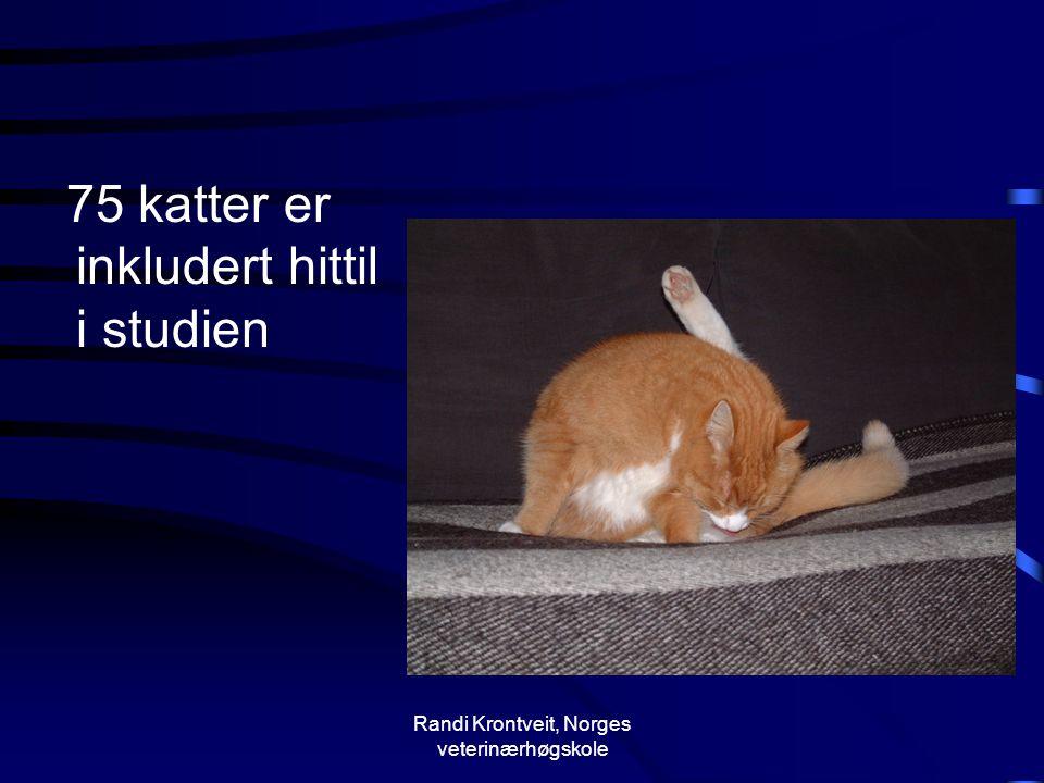 Randi Krontveit, Norges veterinærhøgskole 75 katter er inkludert hittil i studien