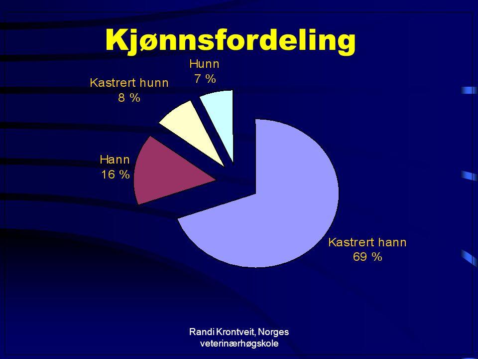 Randi Krontveit, Norges veterinærhøgskole Kjønnsfordeling