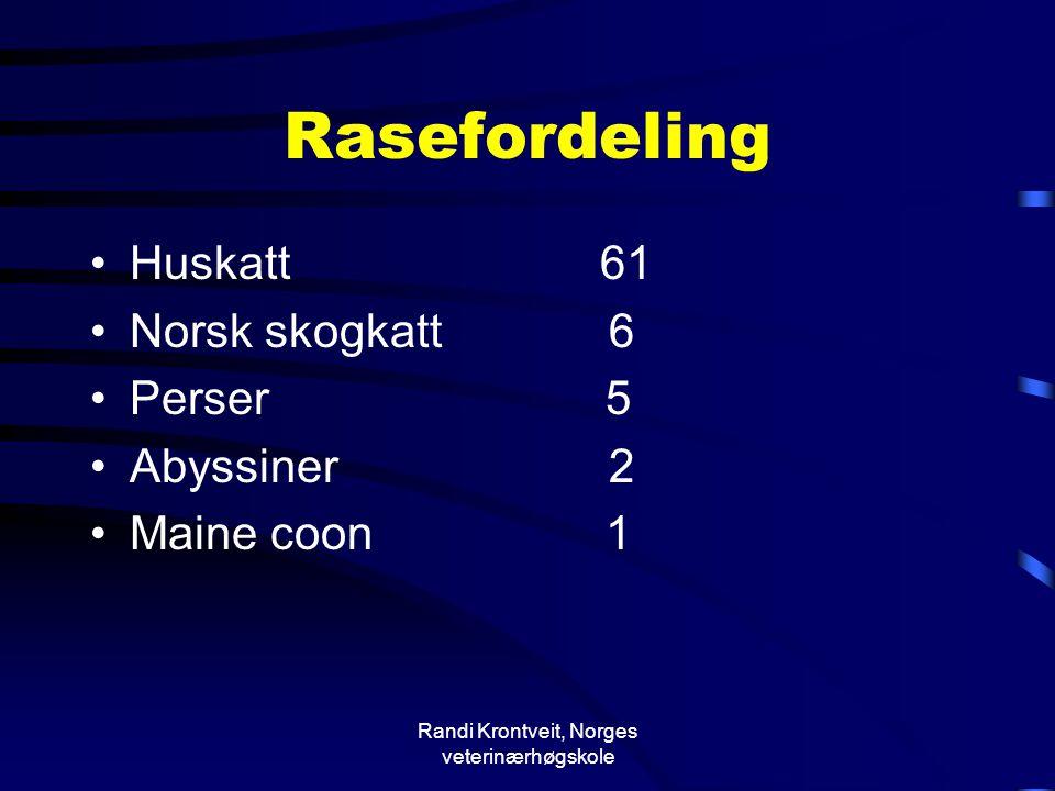 Randi Krontveit, Norges veterinærhøgskole Rasefordeling •Huskatt 61 •Norsk skogkatt 6 •Perser 5 •Abyssiner 2 •Maine coon 1