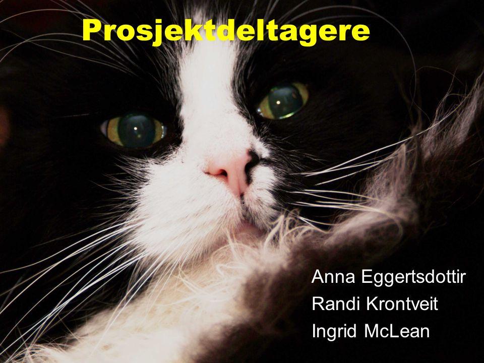 Randi Krontveit, Norges veterinærhøgskole Prosjektdeltagere Anna Eggertsdottir Randi Krontveit Ingrid McLean