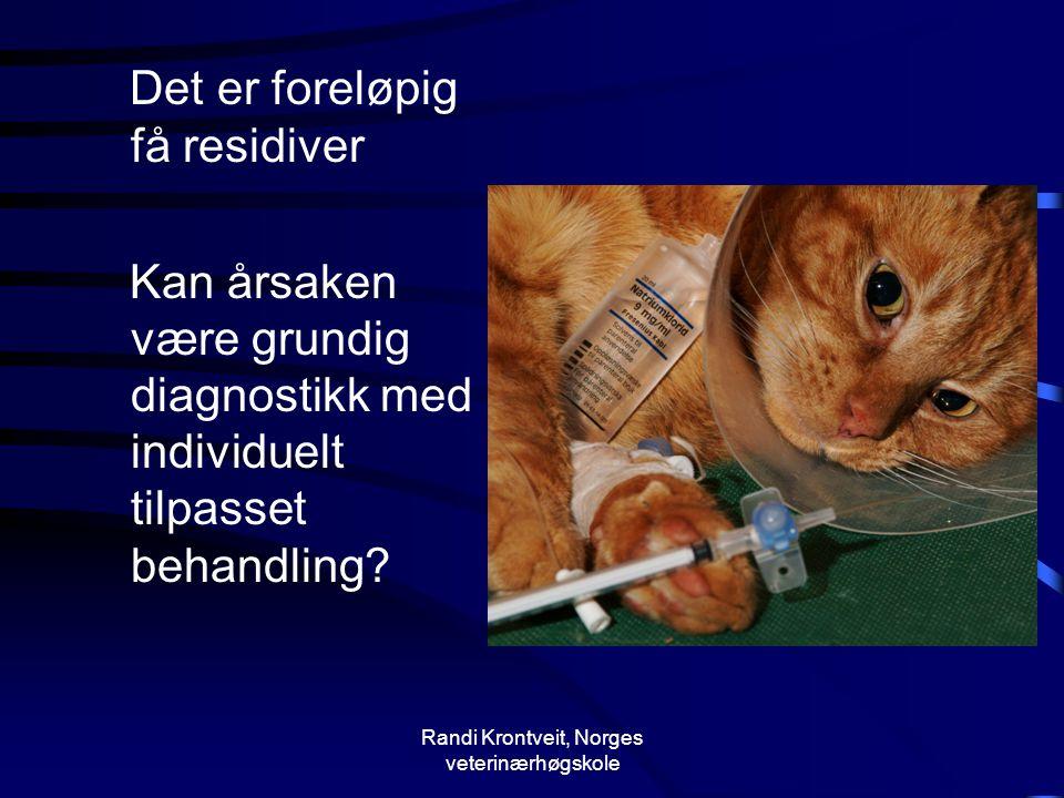 Randi Krontveit, Norges veterinærhøgskole Det er foreløpig få residiver Kan årsaken være grundig diagnostikk med individuelt tilpasset behandling?