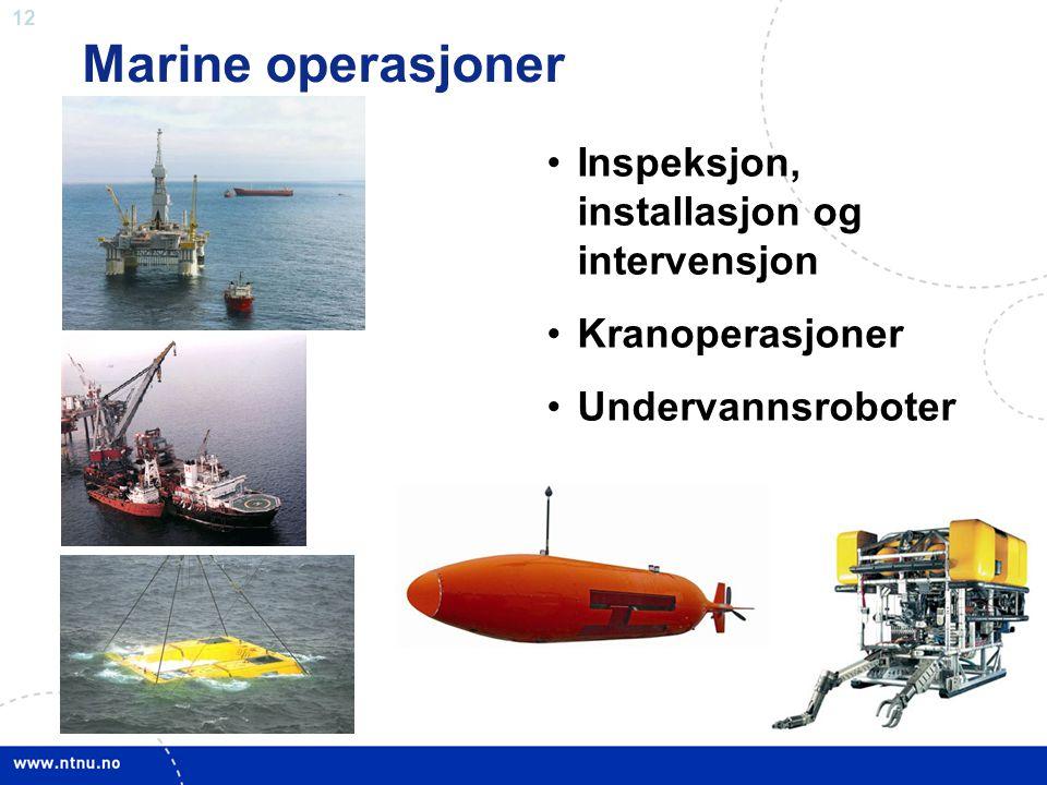 12 Marine operasjoner •Inspeksjon, installasjon og intervensjon •Kranoperasjoner •Undervannsroboter