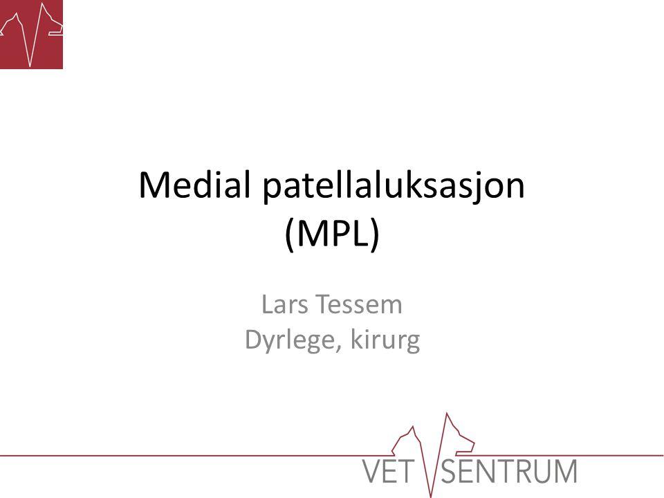 Medial patellaluksasjon (MPL) Lars Tessem Dyrlege, kirurg
