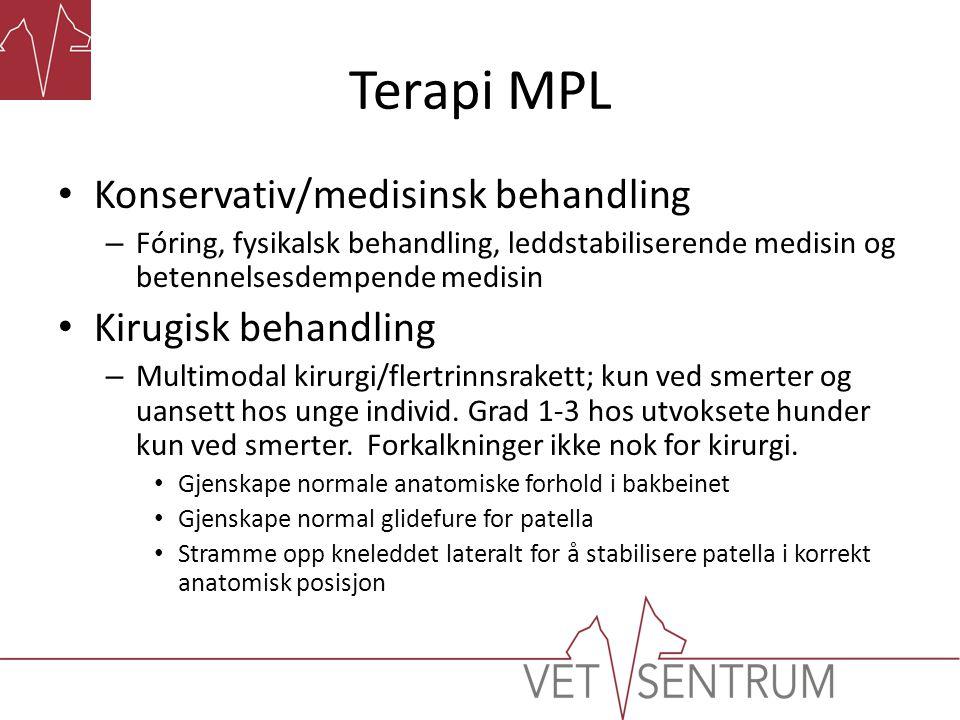 Terapi MPL • Konservativ/medisinsk behandling – Fóring, fysikalsk behandling, leddstabiliserende medisin og betennelsesdempende medisin • Kirugisk beh