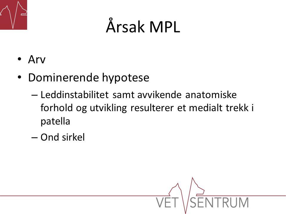 Årsak MPL • Arv • Dominerende hypotese – Leddinstabilitet samt avvikende anatomiske forhold og utvikling resulterer et medialt trekk i patella – Ond s