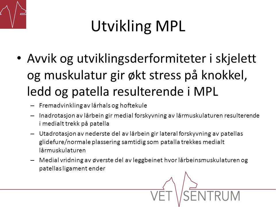 Utvikling MPL • Avvik og utviklingsderformiteter i skjelett og muskulatur gir økt stress på knokkel, ledd og patella resulterende i MPL – Fremadvinkli