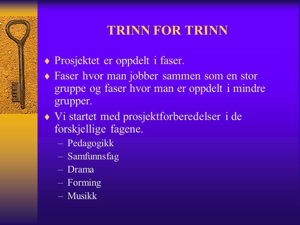 TRINN FOR TRINN  Prosjektet er oppdelt i faser.  Faser hvor man jobber sammen som en stor gruppe og faser hvor man er oppdelt i mindre grupper.  Vi