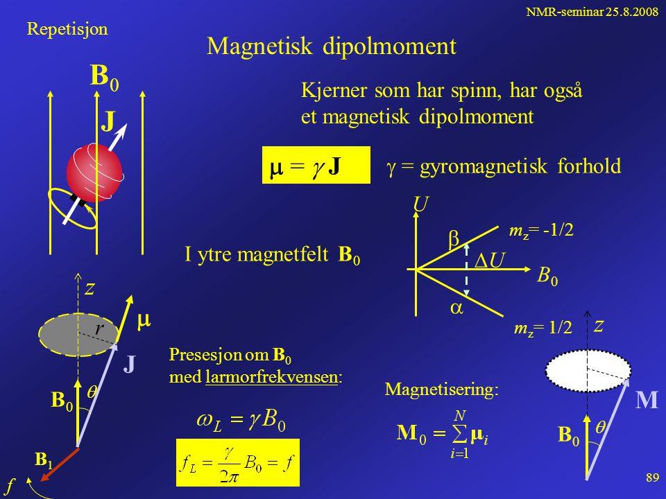 NMR-seminar 25.8.2008 88 MR-bilde av foreleserens hode