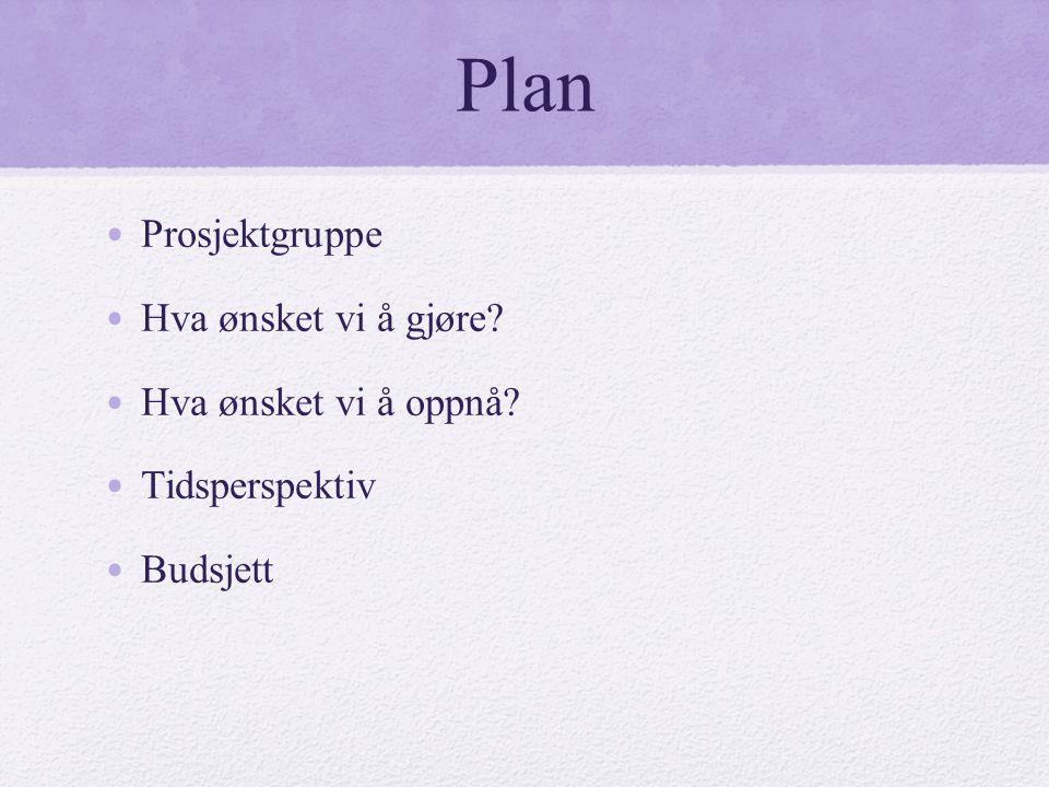 Plan • Prosjektgruppe • Hva ønsket vi å gjøre? • Hva ønsket vi å oppnå? • Tidsperspektiv • Budsjett