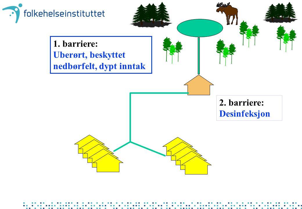1. barriere: Uberørt, beskyttet nedbørfelt, dypt inntak 2. barriere: Desinfeksjon