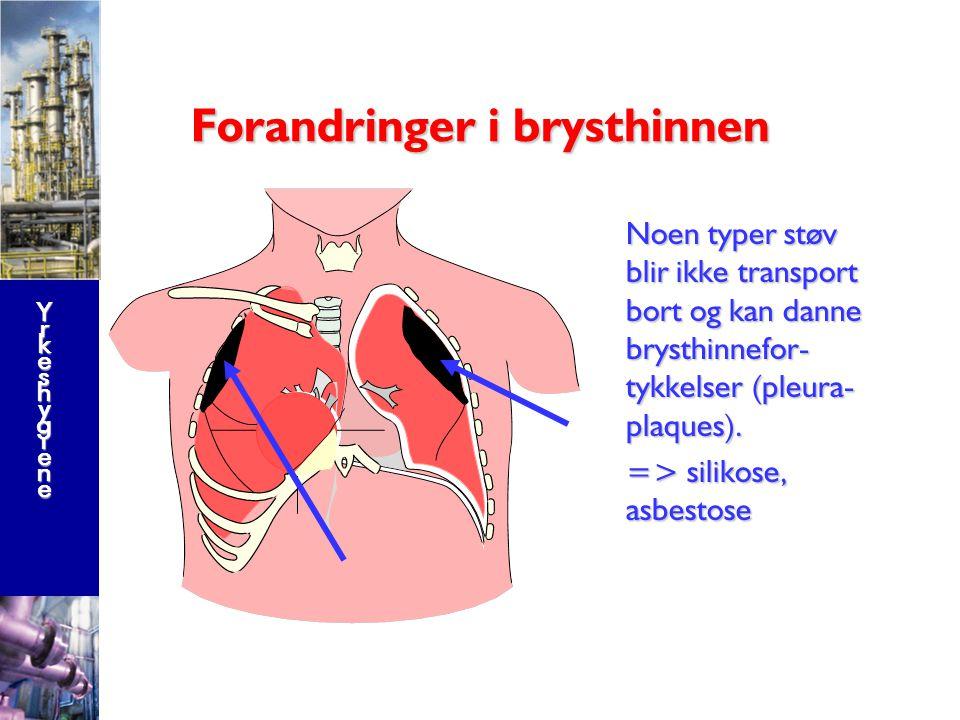 YrkeshygieneYrkeshygieneYrkeshygieneYrkeshygiene Respirabelt støv går helt ned i lungeblærene og blir vanligvis uskadeliggjort vha kroppens immunforsvar.