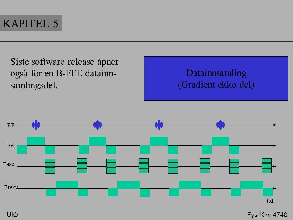 """KAPITEL 5 Datainnsamling (Gradient ekko del) Datainnsamlings delen består av et """"tog"""" av gradient ekko. Lav verdi av flip vinkel (5°-20°) velges, samt"""