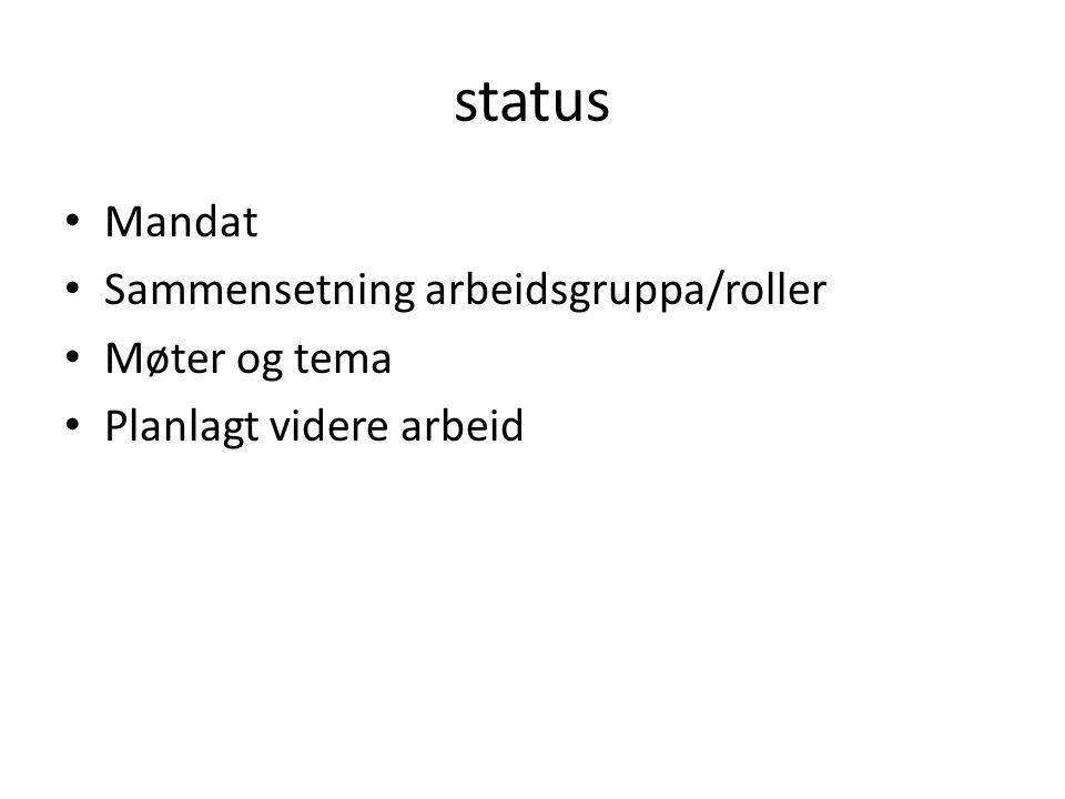 status • Mandat • Sammensetning arbeidsgruppa/roller • Møter og tema • Planlagt videre arbeid