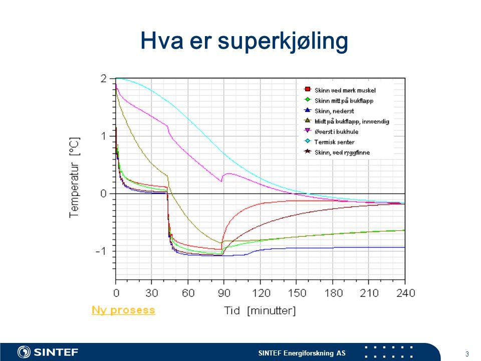 SINTEF Energiforskning AS 4 Superkjøling av torskeloins  Mål for prosjektet  Produsere kontrollert superkjølte loins av hvitfisk for introduksjon og evaluering i marked.